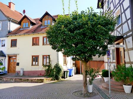 Einfamilienhaus (Doppelhaushälfte) in Wetter (Hessen)